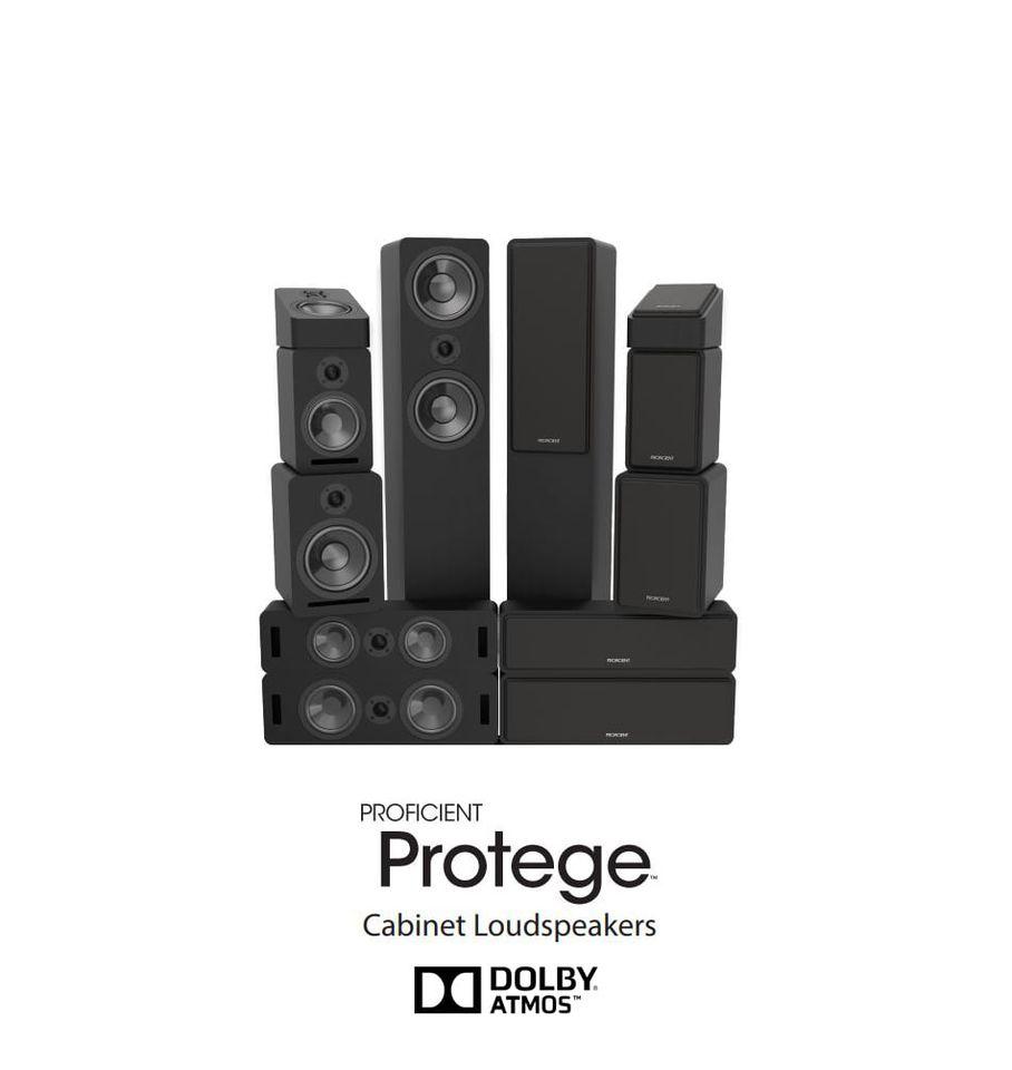 Proficient Protege 5.0
